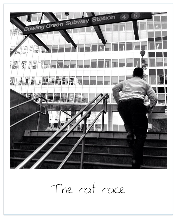The_Rate_Race