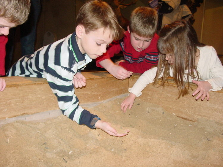 Kids-Sifting-For-Fossils