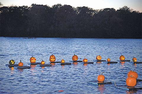 pumpkins-on-water