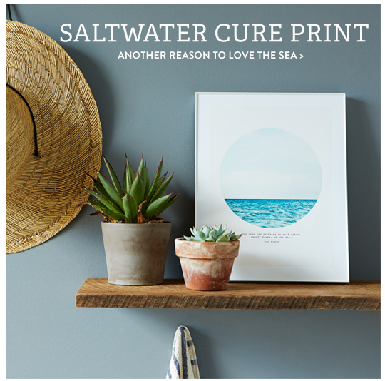 saltwaterprint1