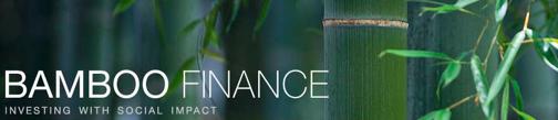 Bamboo Finance