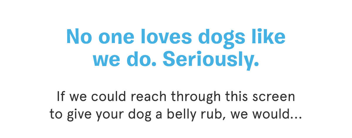 No one loves dogs like we do. Seriously.
