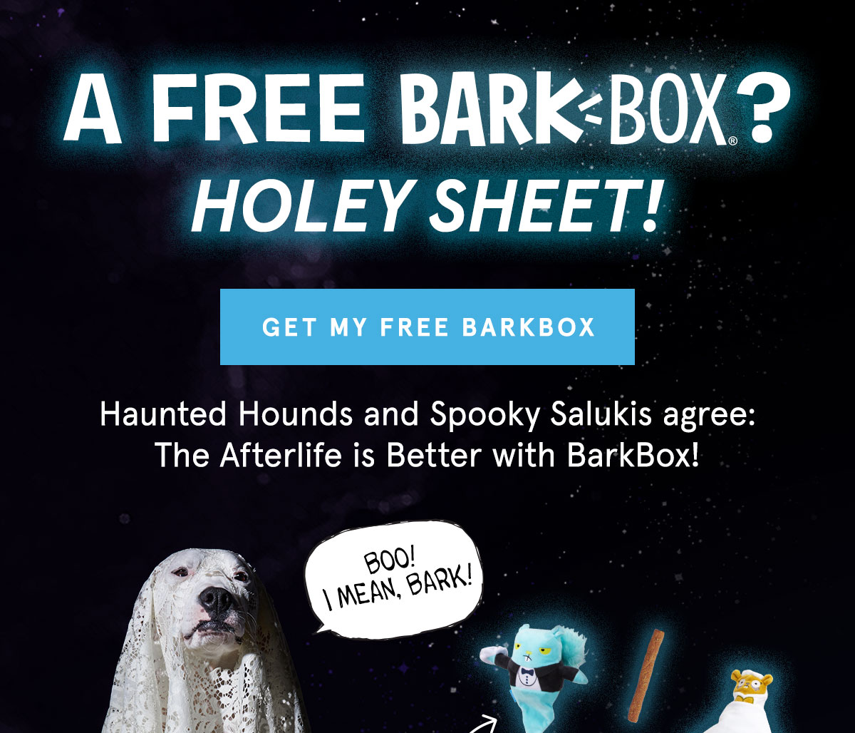 A Free BarkBox? Holey Sheet! | GET MY FREE BARKBOX