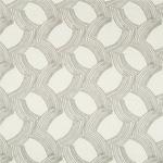 Kravet WHYKNOT DOVE Fabric