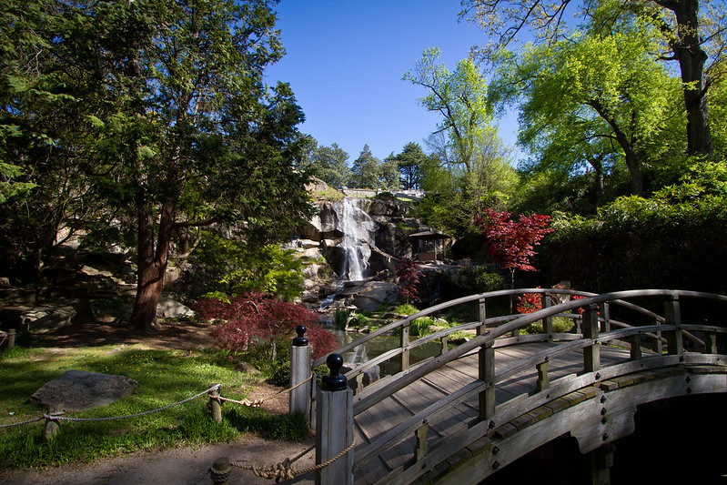 A view of the Japanese gardens at Maymont Park with the waterfall in the background and the footbridge in the foreground.